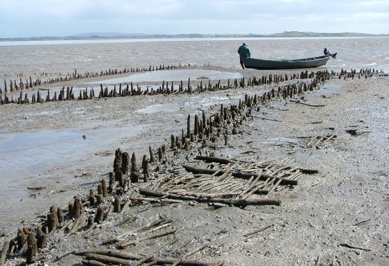 Fish Traps on the River Fergus