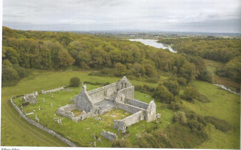 Killone Abbey | Roisín Burke