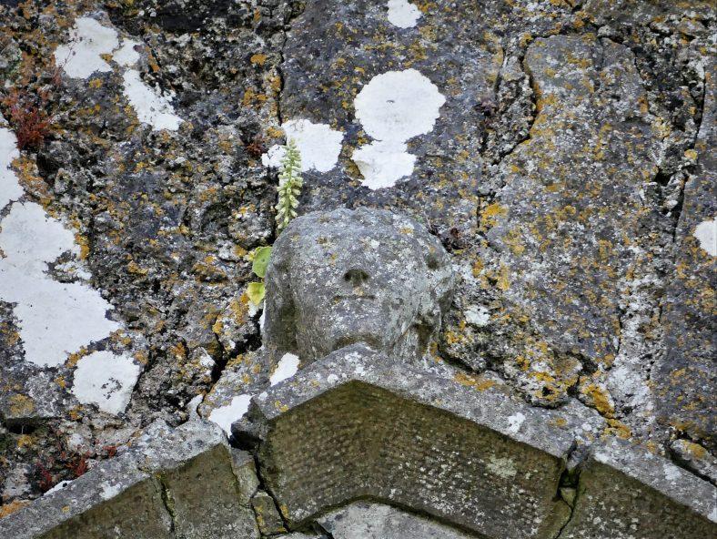 face above 15th C chancel window | Christy Leyden