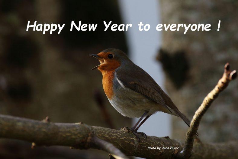 New Year Greetings  | John Power