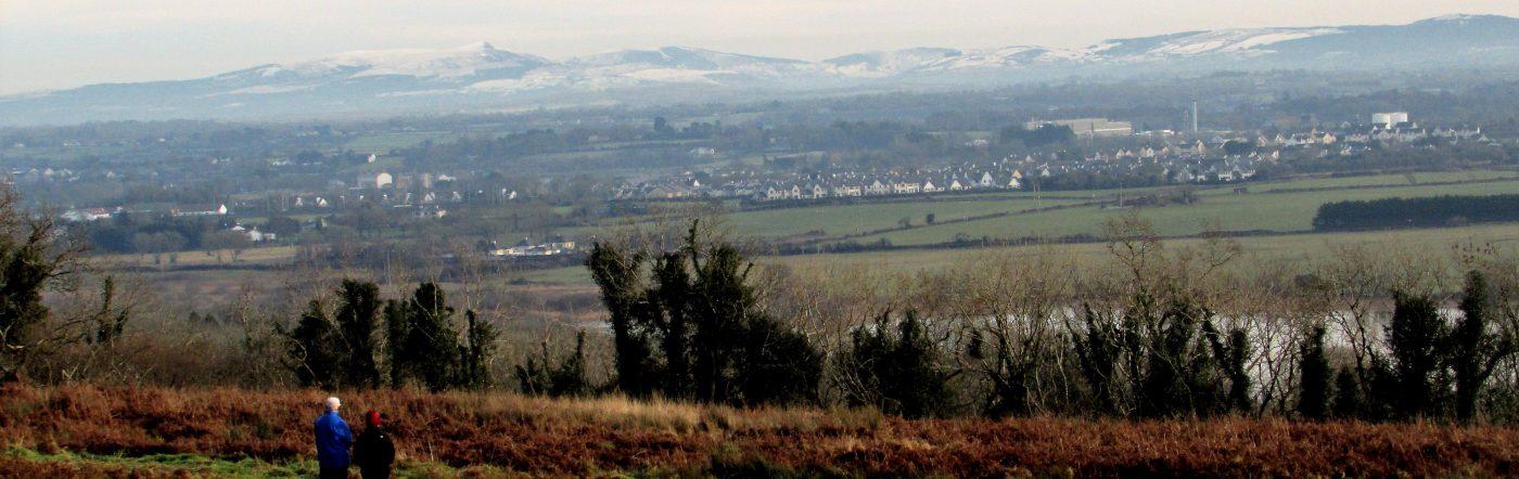Clarecastle from Ballybeg Woods