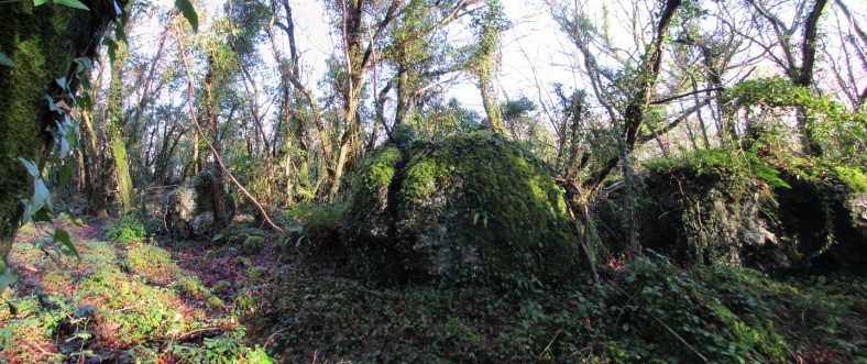 Ballybeg Fort   Eric Shaw