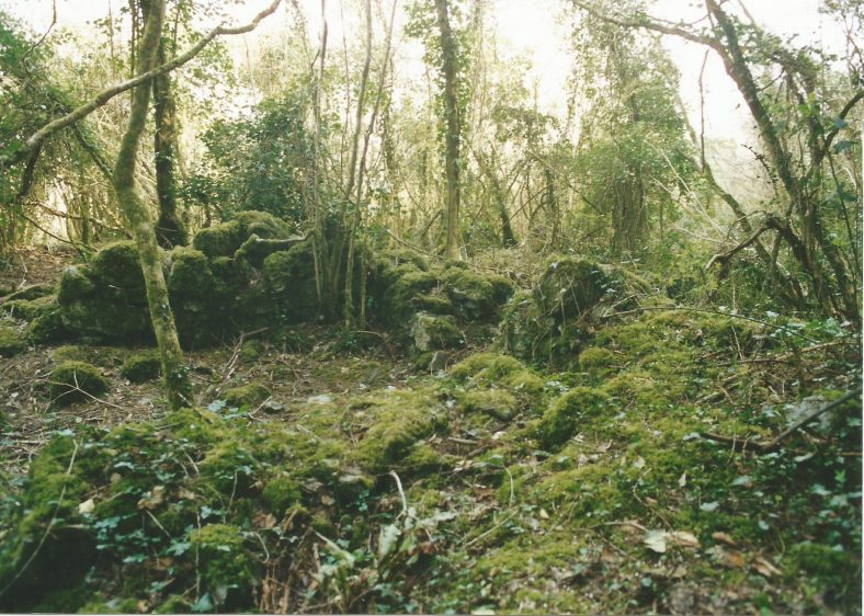 Ballybeg stone house, on the 1842 map and probably older   Eric Shaw