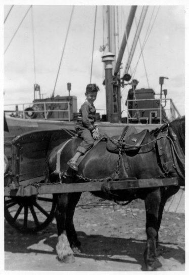 7. Willem Moojen on a horse at Clarecastle Quay 25 September 1958  | Willem Moojen