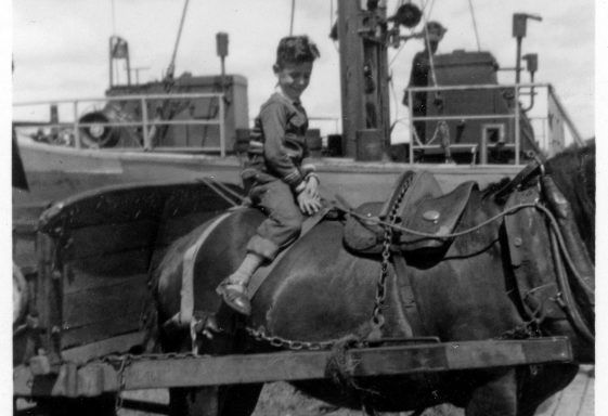 A Dutchman remembers the Port of Clare in 1958