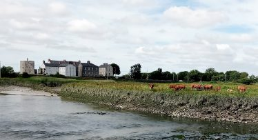 'sailing right past meadows with grazing cattle' | Eric Shaw